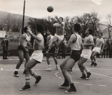 cral_1959